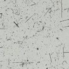 Аксель-2919S5